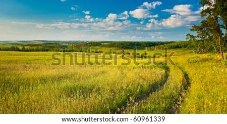summer evening beautiful landscape