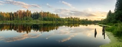 summer evening landscape on Ural lake with pine trees on the shore, Russia, August