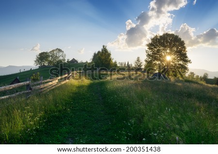 Summer evening landscape with sunlight through the trees. Meadow Road in the mountain village. Carpathians, Ukraine, Europe