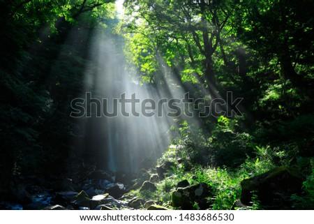 Summer Falls, Yurihonjo City, Akita #1483686530