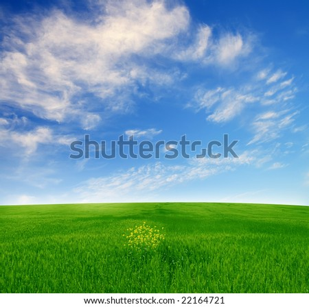 summer field landscape - Shutterstock ID 22164721