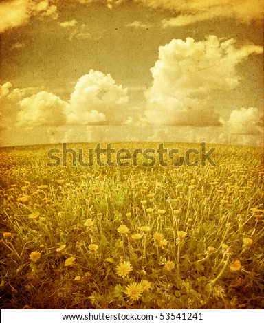 Summer field under sky in grunge and retro style
