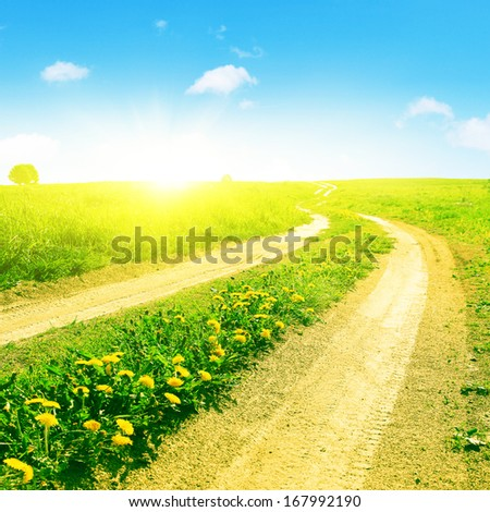 Summer field with road and sun in blue sky.