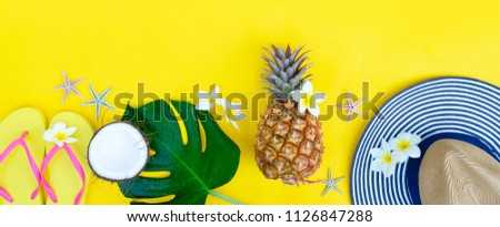 406fafa1a47d Summer flat lay border with pinapple
