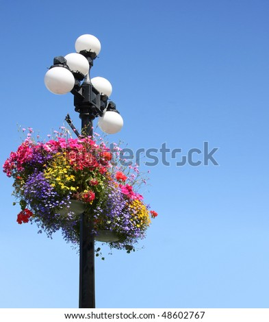 Summer floral baskets hanging from a street lamp against a bright blue sky. Victoria, British Columbia.