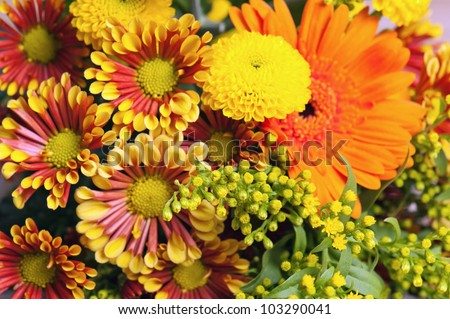 summer flowers bouquet in a vase, close-up