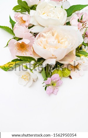 summer flowers on the white background