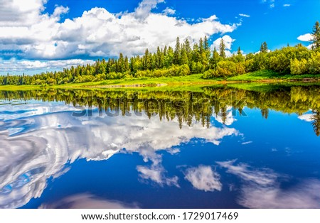 Summer forest lake water reflection
