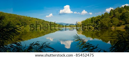 Summer forest lake with mirror reflection