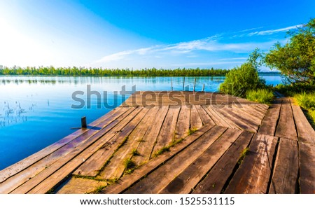 Summer forest river pier view. River pier view. River pier scene. Pier river view