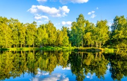 Summer forest river reflection landscape. Forest river reflection view. Forest river landscape. Green forest river view