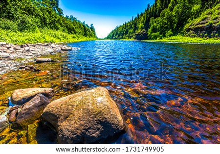 Summer forest river water rock. River in summer forest. Summer river water view