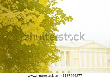 Summer garden in St. Petersburg on background of Palace with colonnade and gallery. Autumn in Park and on streets, defoliation, yellow leaves. Walking along city streets and alleys of Park