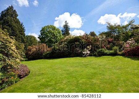 Summer garden, tree, flower and blue sky