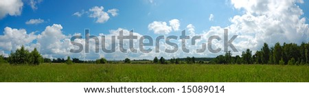 summer green fields and blue sky panorama