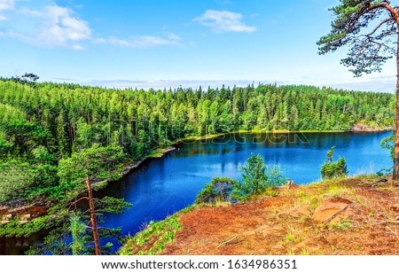 Summer green forest river view. Karelia forest river landscape. Forest river in Karelia, Russia