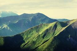 Summer green hills