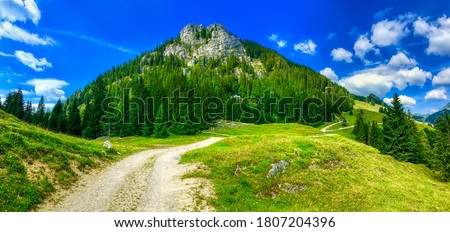 Summer green mountain path landscape. Mountain hill path in summer. Mountain green hill path landscape. Green mountain hills landscape
