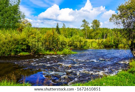 Summer green nature river landscape. Forest river wild flowing. Summer forest river flow. Summer river in forest