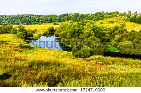 Summer green nature scene view
