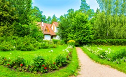 Summer green rural cottage path. Cottage garden path landscape. Cottage path in summer garden. Summer cottage path