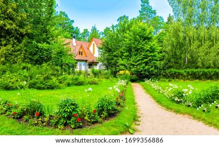 Summer green rural cottage path. Cottage garden path landscape. Cottage path in summer garden. Summer cottage path