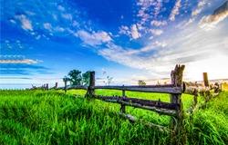 Summer green rural farm fence landscape. Wooden farm fence summer scene. Country farm fence summer evening panorama