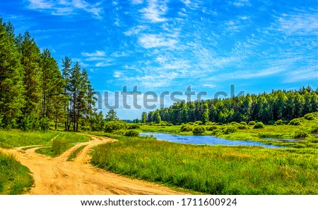 Summer green rural nature landscape. Summer nature view. Summer nature landscape