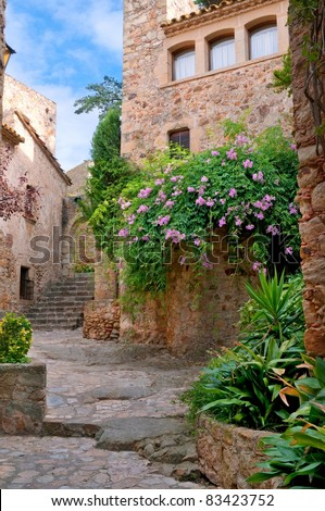 Summer green yard in medieval town, Peratallada, Spain