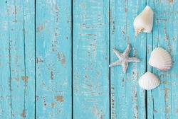 Summer holiday background, seashells and starfish on turquoise wooden boards.