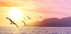 Summer holidays on the coast of Greek islands. Panorama of seascape with silhouettes of hills, golden sun and flying birds. Sea sunset for your background of serenity, melancholic or your travel dream