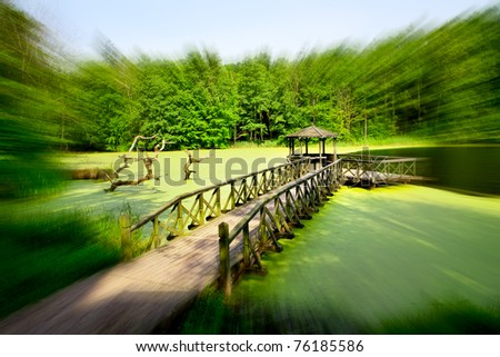 summer house by the lake, green forest and and wooden jetty