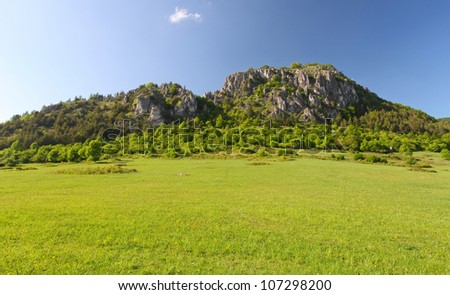 Summer in mountains, rock, green bush, trees and a grass - stock photo