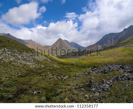 Summer in the Alpine mountain tundra. Tunka ridge. Eastern Sayan. Republic of Buryatia