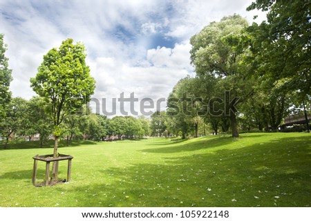 Summer in Westbourne Green Park, London (UK)