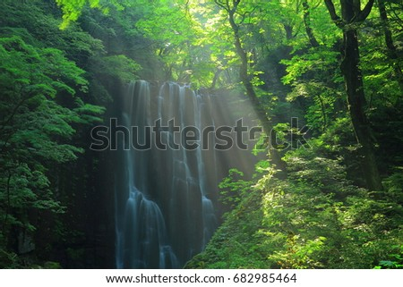Summer kameda fudo waterfall #682985464