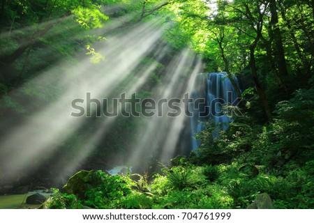 Summer kameda fudo waterfall #704761999