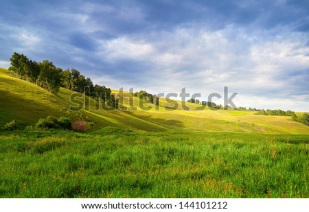 Summer landscape #144101212