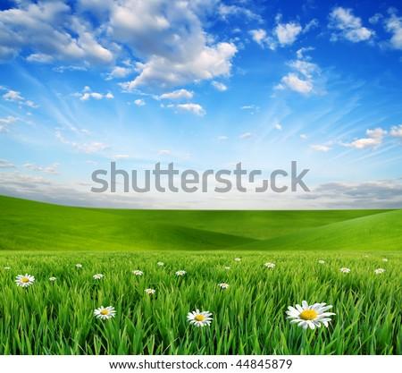 summer landscape #44845879
