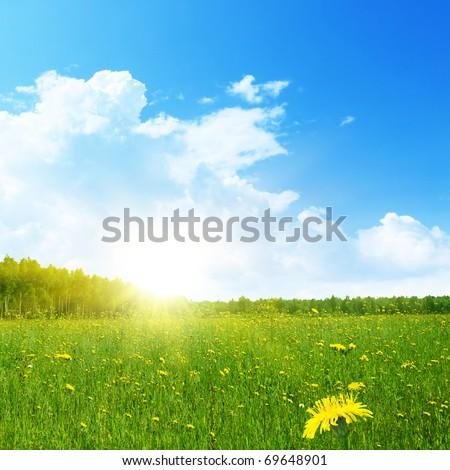 Summer landscape. - Shutterstock ID 69648901