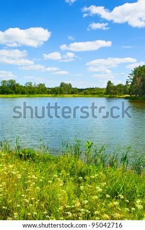 Summer Landscape #95042716