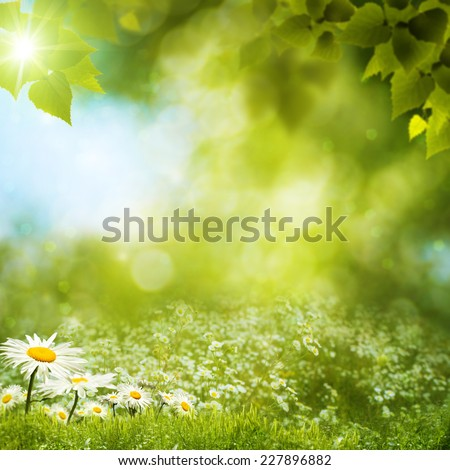 Summer landscape. Abstract environmental backgrounds - Shutterstock ID 227896882