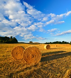 Summer Landscape, Bales of Straw in Stubble Field during Harvest