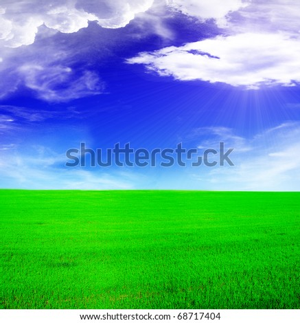 Summer landscape - blue sunny sky and green field