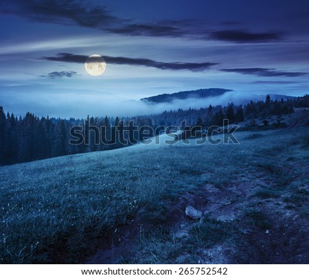 summer landscape. fog from conifer forest surrounds the mountain top at night in full moon light