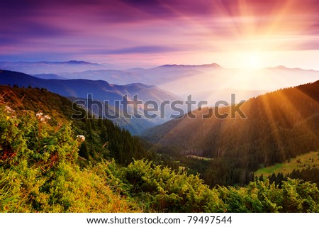 Summer landscape in mountains with the sun - stock photo