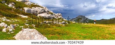 Summer landscape in the Crimea
