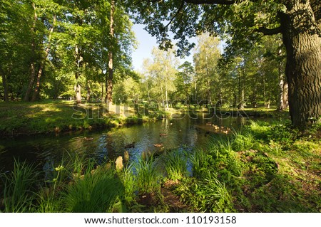 Summer landscape in the national park Gatchina. Russia