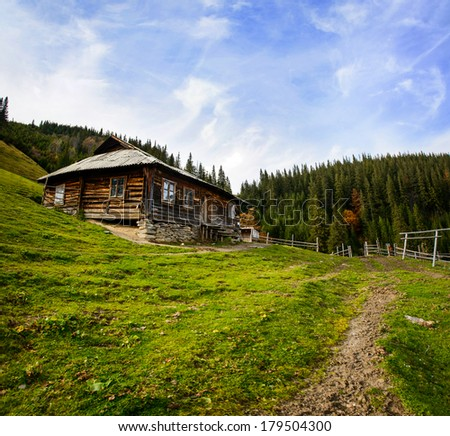Summer landscape. Mountain village in the Ukrainian Carpathians.