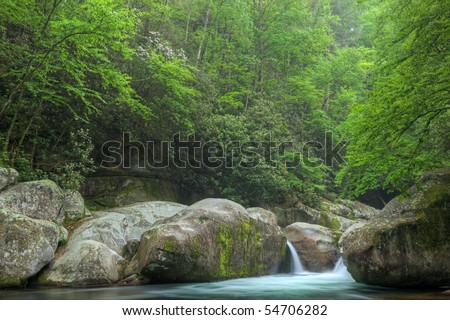 Summer landscape of a cascade on Big Creek, Great Smoky Mountains National Park, Tennessee, USA
